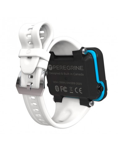 Dirzone Blanking Plug for right Extandable DIN Valve