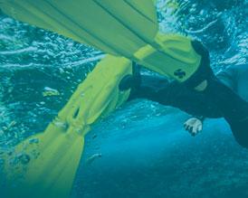 Tienda online de material de buceo y submarinismo